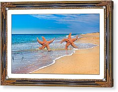 Fun For A Day Acrylic Print