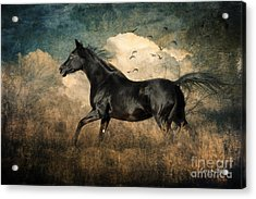 Fun To Run Acrylic Print