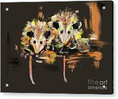Funcky Baby Possums Acrylic Print by Go Van Kampen