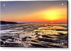 Fundy's Mud Flats Acrylic Print by Nancy Dempsey