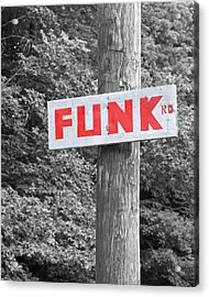 Acrylic Print featuring the photograph Funk Road by Brooke T Ryan