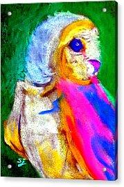 Funky Barn Owl Art Print Acrylic Print
