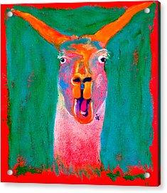 Funky Llama Art Print Acrylic Print
