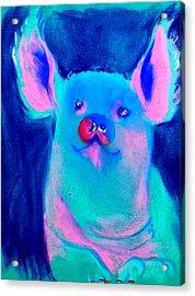 Funky Piggy Blue Acrylic Print