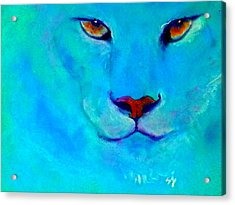 Funky Snow Leopard Turquoise Acrylic Print