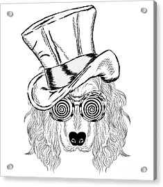 Funny Dog In An Unusual Hat And Acrylic Print
