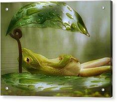 Funny Happy Frog Acrylic Print by Jack Zulli