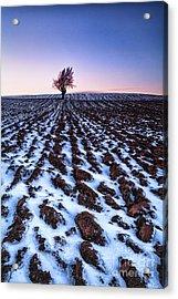 Furows In The Snow Acrylic Print by John Farnan