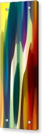 Fury Panoramic Vertical 4 Acrylic Print by Amy Vangsgard