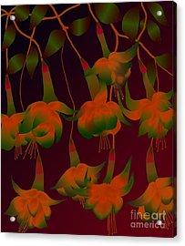 Acrylic Print featuring the digital art Fuschias by Latha Gokuldas Panicker