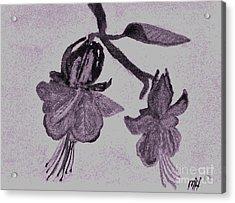 Fushia Angel Shadow Acrylic Print by Marsha Heiken