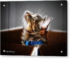 Fuzzy Friend Acrylic Print