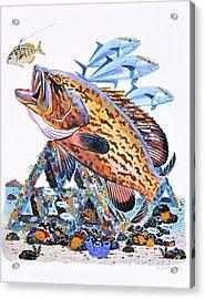 Gag Grouper Acrylic Print by Carey Chen