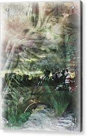Gaia Acrylic Print by Liz Campbell