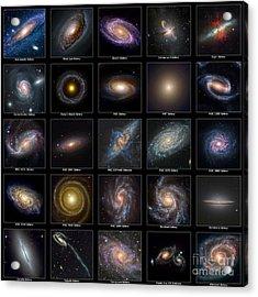 Galaxy Collection Acrylic Print by Antony McAulay
