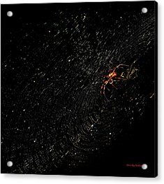 Galaxy Web Acrylic Print