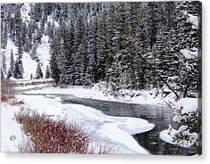 Gallatin River Acrylic Print by Meagan Suedkamp