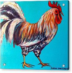 Gallo Acrylic Print