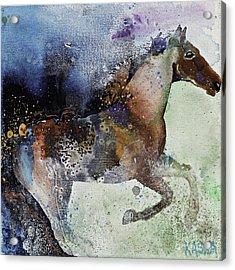 Gallop Acrylic Print by Kasha Ritter