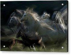 Gallop Acrylic Print