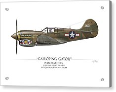 Galloping Gator P-40k Warhawk Acrylic Print by Craig Tinder