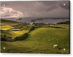 Galway Morning Acrylic Print by Tim Bryan