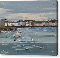 Galway Swans Galway Ireland Acrylic Print
