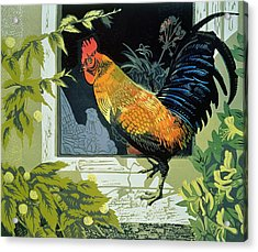 Gamecock And Hen Acrylic Print by Carol Walklin