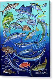 Gamefish Collage In0031 Acrylic Print by Carey Chen