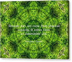 Gandhi Inspirational Motivational Quote About Willpower  Acrylic Print by Quintus Wolf