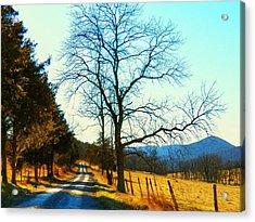 Gap Road Acrylic Print by Joyce Kimble Smith