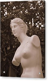 Acrylic Print featuring the photograph Garden Bust by George Mount