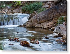 Garden Canyon Acrylic Print by Beverly Parks