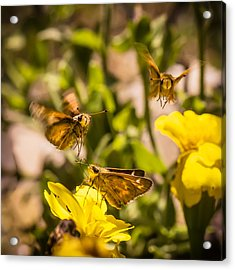 Garden Fairies Strike A Vogue Pose Acrylic Print