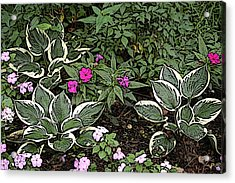 Garden Flowers Acrylic Print by Donald Williams