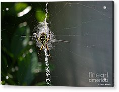 Acrylic Print featuring the photograph Garden Friend by Tannis  Baldwin