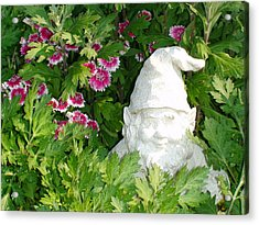 Acrylic Print featuring the photograph Garden Gnome by Charles Kraus