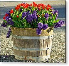 Garden In A Bucket Acrylic Print