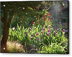 Acrylic Print featuring the photograph Garden by Leslie Hunziker