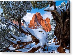 Garden Of The Gods Framed By Juniper Trees Acrylic Print by John Hoffman