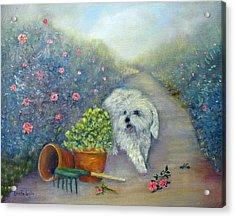 Garden Path Acrylic Print by Loretta Luglio