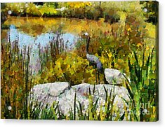 Garden Pond Acrylic Print by Fran Woods