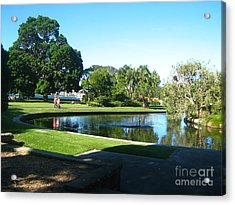 Acrylic Print featuring the photograph Sydney Botanical Garden Lake by Leanne Seymour