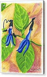 Garden Rabbit20 Salvia Guaranitica Acrylic Print by Vin Kitayama