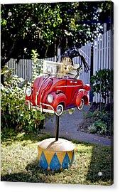 Garden Rag Top Art Acrylic Print by Her Arts Desire