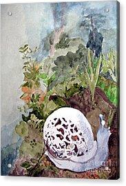 Garden Snail Acrylic Print by Sandy McIntire