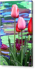 Acrylic Print featuring the photograph Garden Sunset by Brenda Pressnall