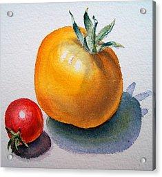 Garden Tomatoes Acrylic Print by Irina Sztukowski