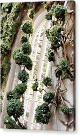 Garden Window Acrylic Print by Elin Mastrangelo