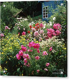 Garden With Colorful Flowers Acrylic Print